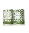 olivenöl baeturia carrasqueña glasflasche 500ml